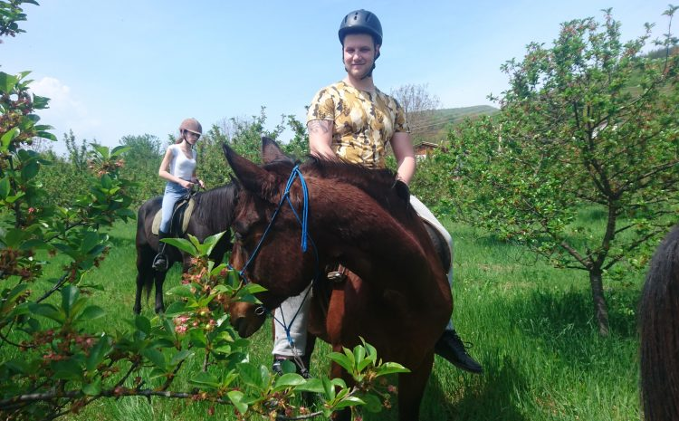 Впечатленията ми от едно място, където разбират природата на коня