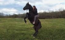 умения по конна езда